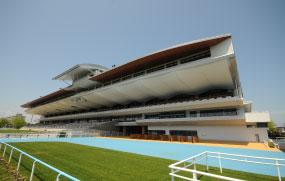 Hakodate Horse Racing