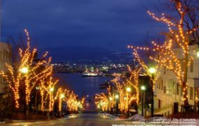 Hakodate Illumination